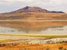 Antelope Island Great Salt Lake UT #2