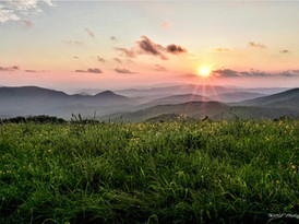 Max Patch #1
