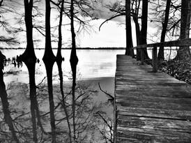 Reelfoot Lake Dock