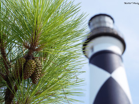 Cape Lookout NC Lighthouse #1