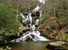 Catawba Falls #1
