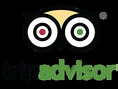 logo-trip-advisor-490x370 (1).png