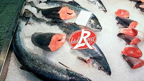 Saumon d'Ecosse label Rouge chez Astoux et Brun