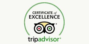 tripadvisor Certificat d'excellence Hava