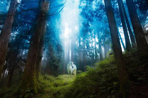 Ride the Unicorn