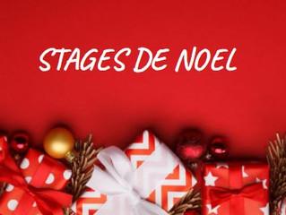 Stages de Noël
