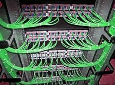 ICTV10_CONT_R53_pic027_mini.jpg