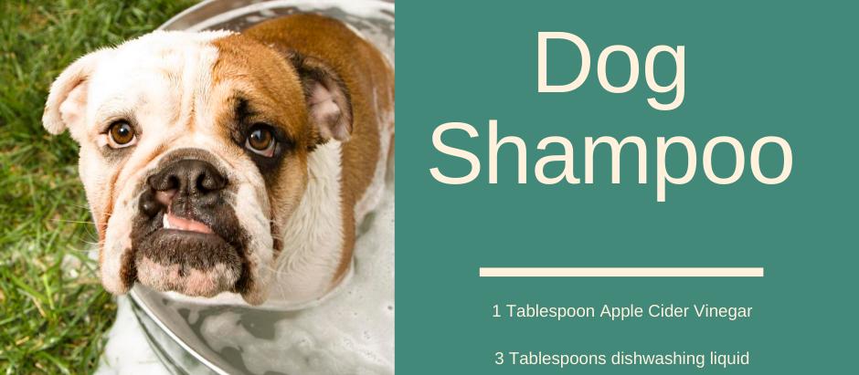 One of my favourite dog shampoo recipes