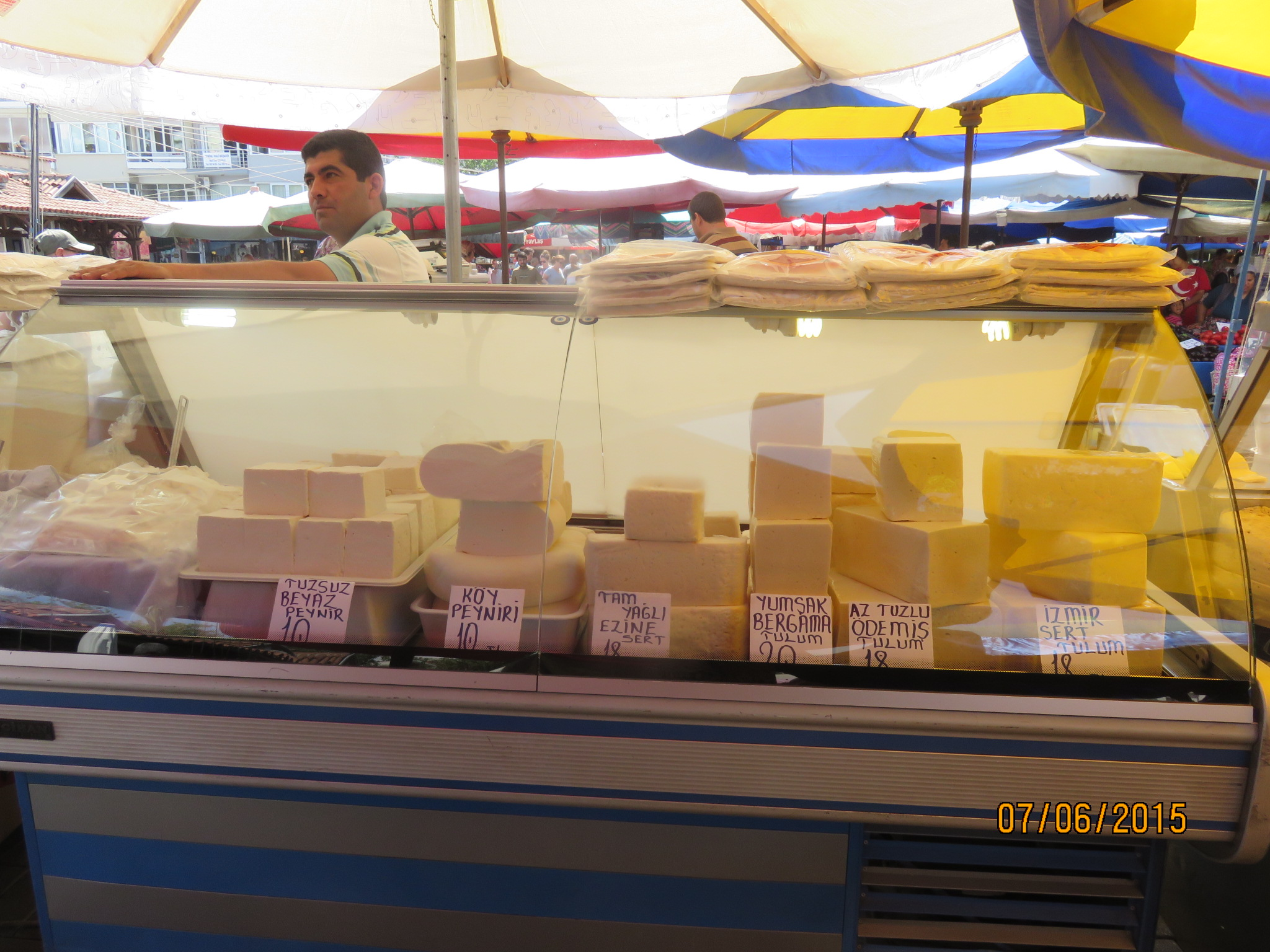 cheeses everywhere