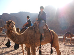 Wadi Rum At Visitors Centre Ready for a long ride