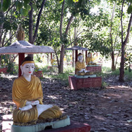 Field of a thousand Buddha images