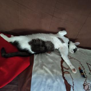 Quand je dors, je suis détendu