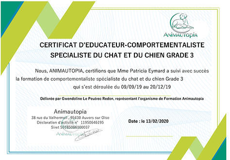 Certificat de fin de formation.jpg