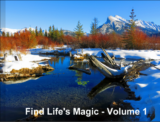 Find lifes magic - volume 1 cover