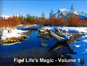Find lifes magic - volume 1 cover.png