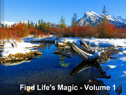 Guided Journey Book to Find Life's Magic -Volume 1