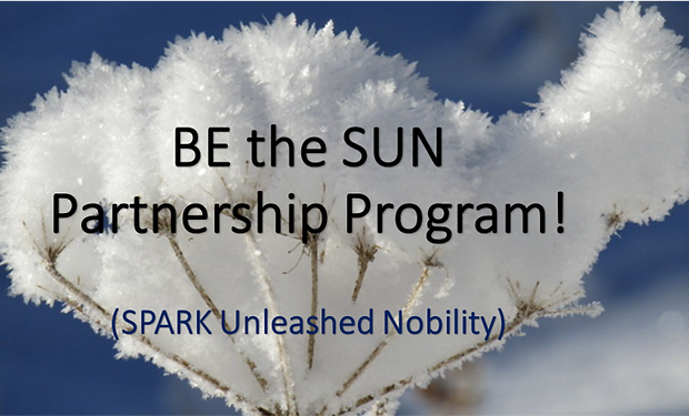 BE the SUN Partnership Program.png