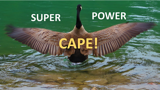Super Power CAPE.png
