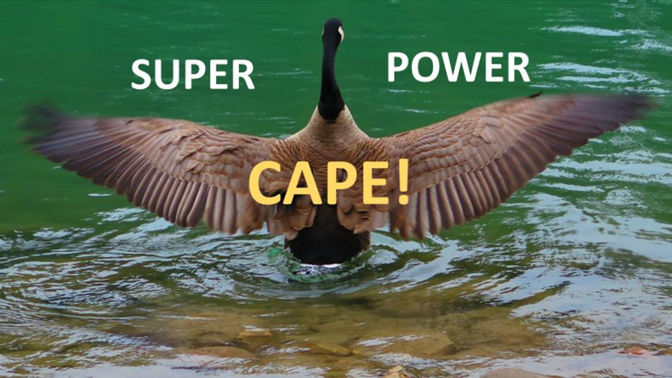 Super Power CAPE.png