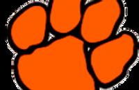 logo - Wildcat.png