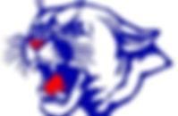 logo - Cougar.jpg