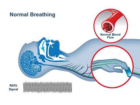 normal_breathing-pic-640x480.jpg