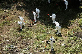 cocula investigators search the dump for remains, source mexico news daily.jpg