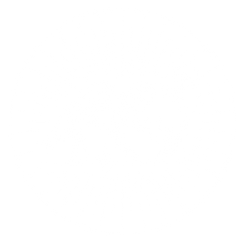 Waldpochen Sun Logo
