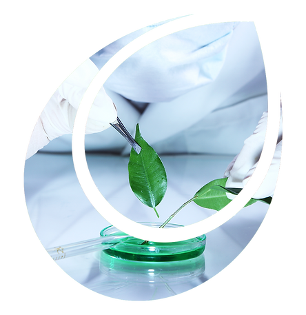 tellus-solucoes-ambientais-desenvolvimen