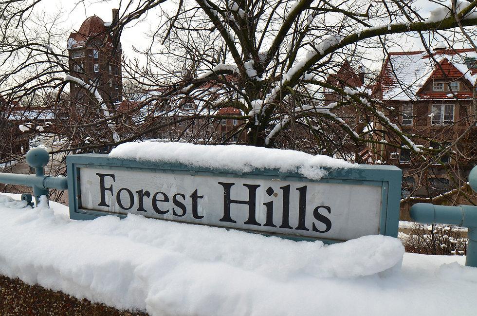 Foerst Hills Station
