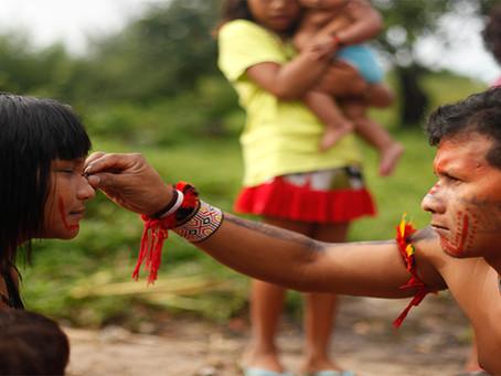 Indígenas Ka'apor denunciam novas invasões ao território tradicional