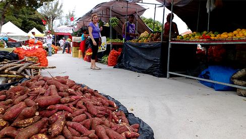 """Lucro dos grandes supermercados aprofunda desigualdades no campo"""
