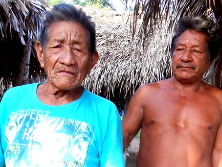 Onda de assassinatos vitima seis Guajajara de três terras indígenas no Maranhão