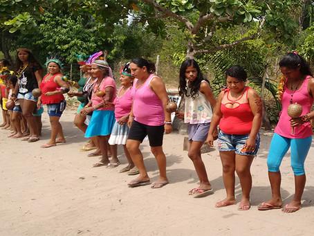 Povo Gamela são atacados após retomada de território no Maranhão