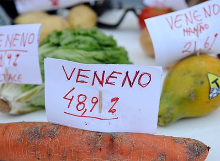 """""""Fusão entre Monsanto e Bayer aumenta monopólio do veneno e da transgenia no mundo"""""""