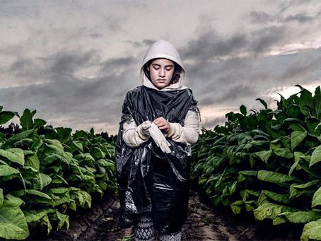 """""""Estados Unidos e o trabalho infantil"""""""