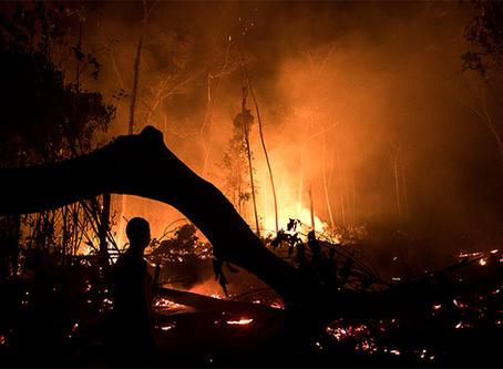 A Amazônia, o Pantanal e o interesse estratégico dos militares