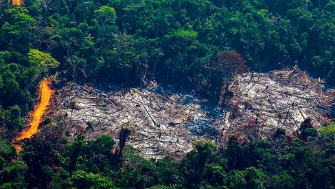 Capital financeiro banca destruição ambiental e violência contra camponeses e indígenas no Brasil