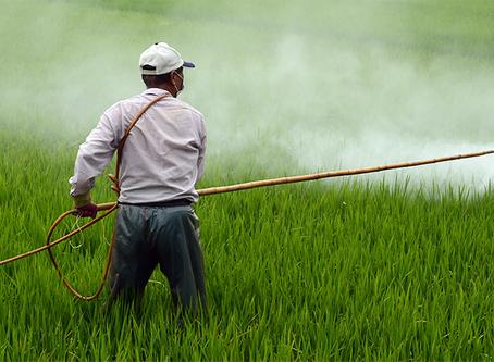 """""""Brasil: uma nação contaminada por agrotóxicos"""""""