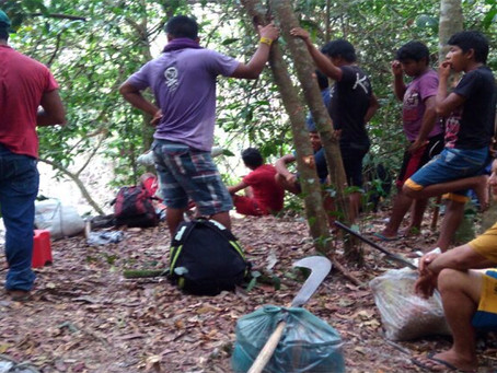 """""""Guardas florestais Ka'apor sofrem emboscada na T.I Alto Turiaçu"""""""