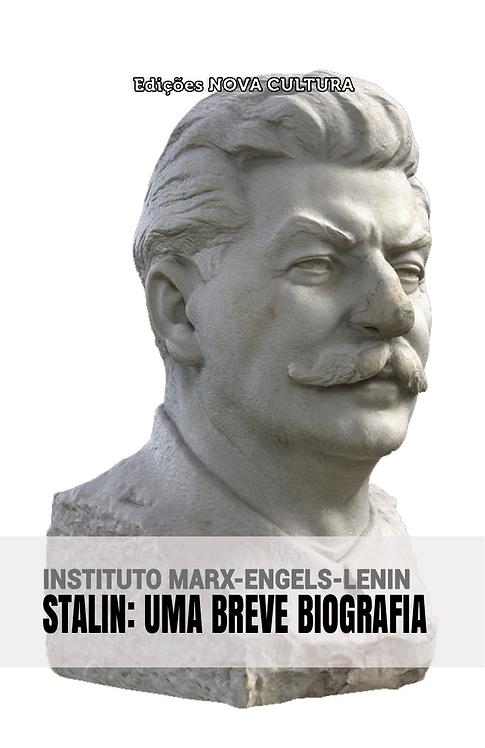 Stalin, uma breve biografia