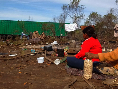 """""""Os Guarani e a contínua agonia e morte nas margens das rodovias"""""""