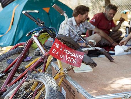 Depois de 730 dias de barricadas, povo argentino derrota fábrica da Monsanto