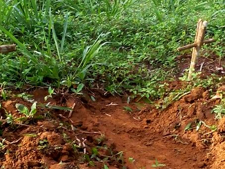 """""""Grileiros e madeireiros anunciam a morte de agricultores na região oeste do Pará"""""""