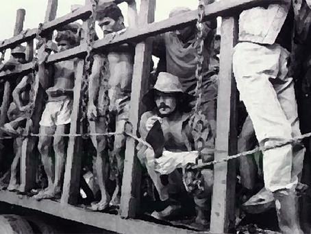 """""""Pecuária ainda lidera flagrantes de trabalho escravo no Brasil"""""""