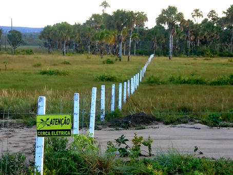 No Oeste baiano, moradores resistem à tentativa de expulsão de povoado