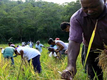 Quilombolas retomam terras griladas por família de Bolsonaro no interior de SP