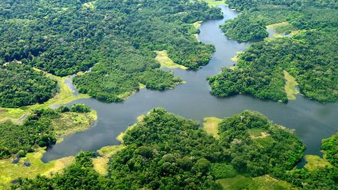 """""""Amazônia: verdades que não se curam"""""""