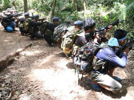 NEP expropria 22 armas de fogo em ação contra empresa, nas Filipinas