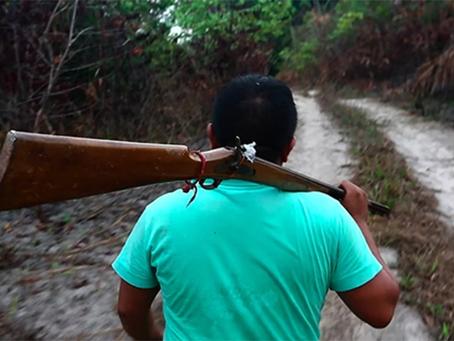 Quando o povo brasileiro conduz a luta armada